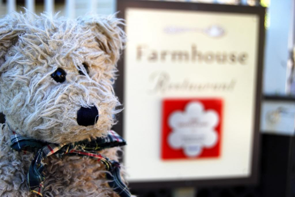 Flickr,  Bear wished upon a Michelin Star by Christina B Castro, CC BY-NC 2.0